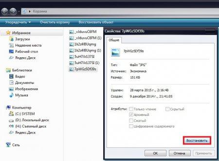 Как восстановить удаленные файлы с корзины (5 способов)