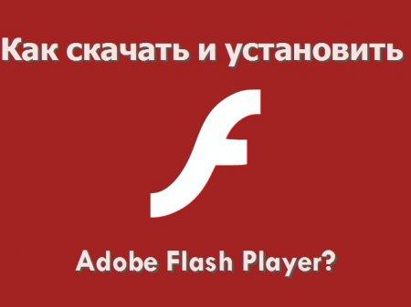 Как скачать и установить программу Adobe Flash Player?